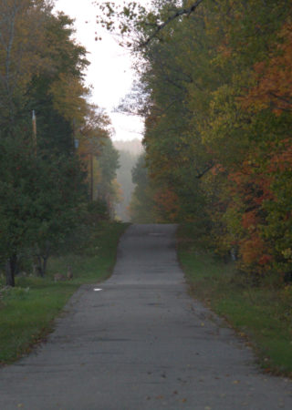 our road in fall